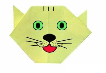 Կատու