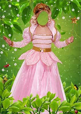 fairy16