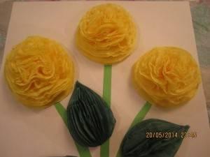 Տարածական ապլիկացիա՝ դեղին ծաղիկներ