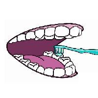 Սովորում ենք մաքրել ատամները