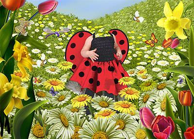 ladybird03