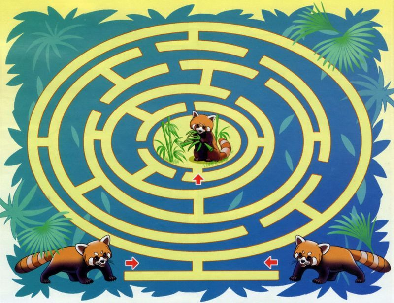 labirint panda 1